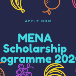 MENA Scholarship Programme 2020 for Study in the Netherlands