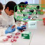 Best-Public-Health-Schools-in-the-World-2020