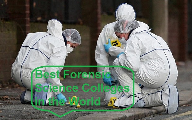 14 Best Forensic Science Colleges in the World 2021-2022