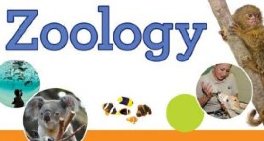 10 Best Online Zoology Degrees in 2021
