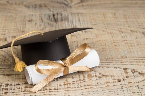 scholarship vs fellowship