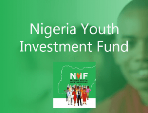 How to Apply for Nigeria Youth Investment Fund (NYIF) 2020
