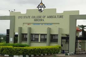 Oyo State College of Agriculture and Technology, Igboora Job Recruitment (4 Positions)